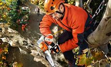 Zagen voor boomverzorging
